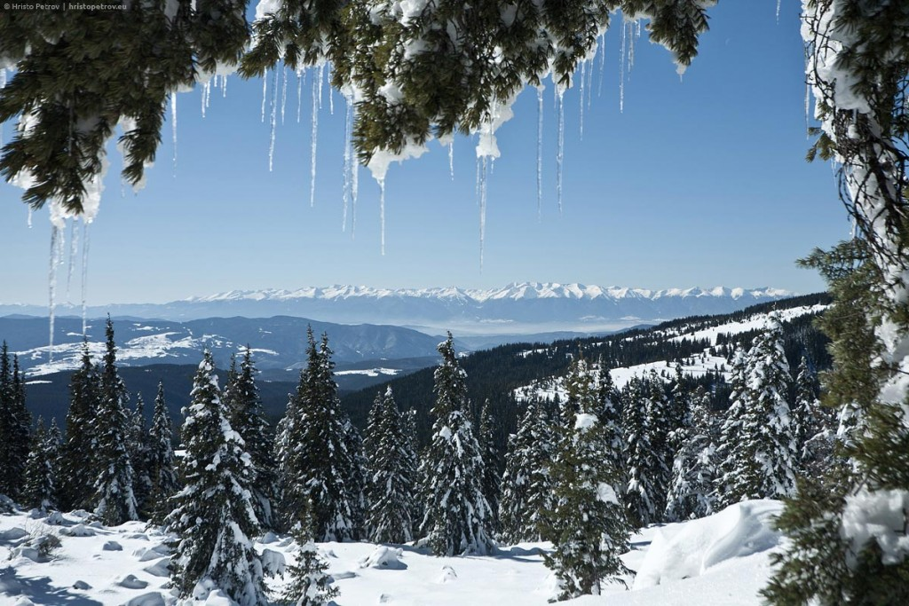beautiful pirin mountain