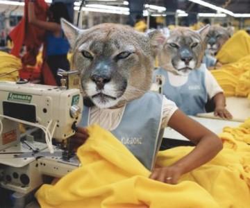 PUMA Creative Factory - Ти казваш, пумите шият!